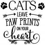 www.themisscat.pl THE MISS CAT naklejka z kotem 30×30 Cats leave paw prints on your heart