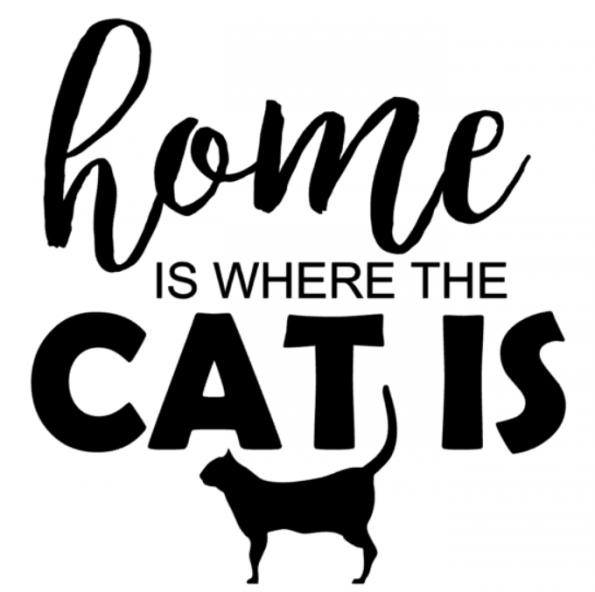 www.themisscat.pl THE MISS CAT naklejka z kotem 30×30 home is where the cat is 2