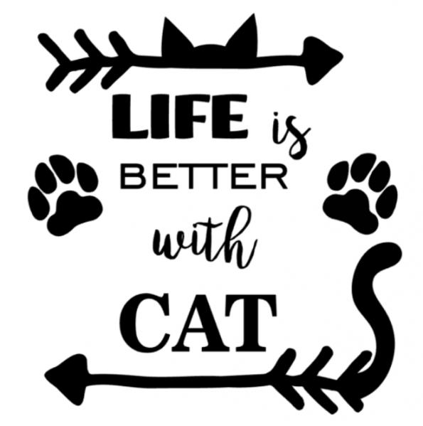 www.themisscat.pl THE MISS CAT naklejka z kotem 30×30 life is better with cat