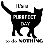 www.themisscat.pl THE MISS CAT naklejka z kotem 30×30 purrfect day