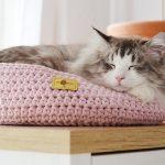 www.themisscat.pl THE MISS CAT legowisko dla kota cat bed cat basket dog bed dog basket COTTON DREAMER light pink z logo