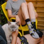 Skarpetki dla kociary z kotami – Kocie oczy (1)