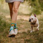 Skarpetki dla psoary z psami -Psi przyjaciele (1)