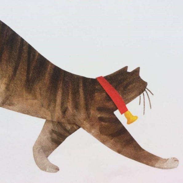 A każdy widizał kota, książka dla dzieci (5)