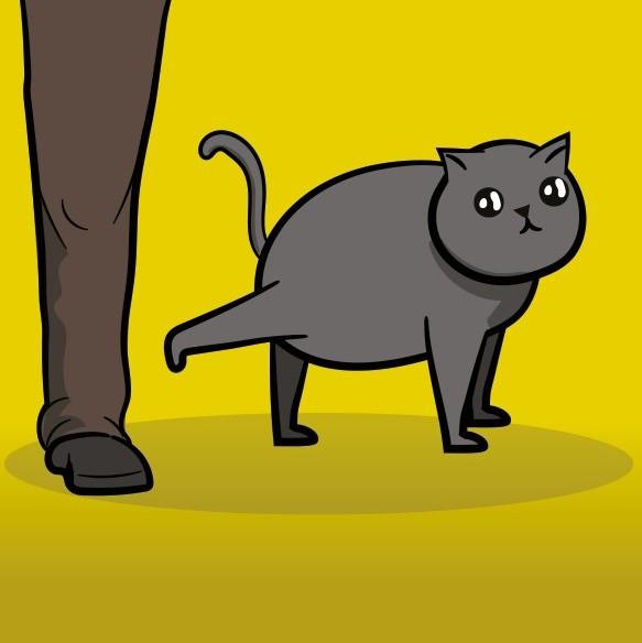 Frywolne kotki, dodatek do gry Eksplodujące kotki, gra towarzyska, Rebel (2)