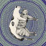 Kamasutra kociego snu. 33 najpopularniejsze pozycje (1)