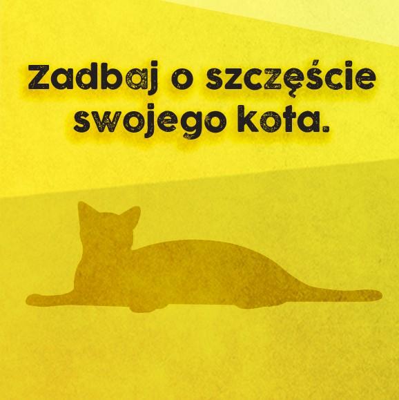 Kocie mojo, czyli jak być opiekunem szczęsliwego kota Jackson Galaxy (7)