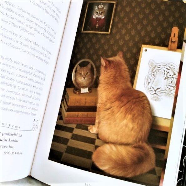 Magia kotów, Barbara Sieradzan (2)
