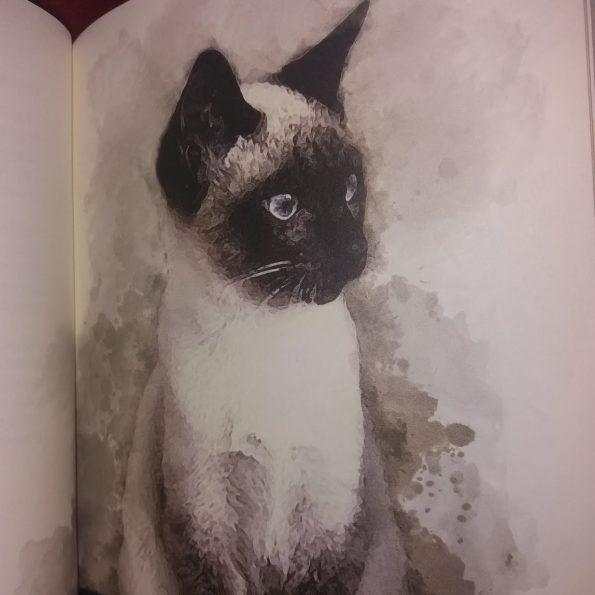 Najpiękniejsze wiersze o kotach, Franciszek J. Klimek (2)