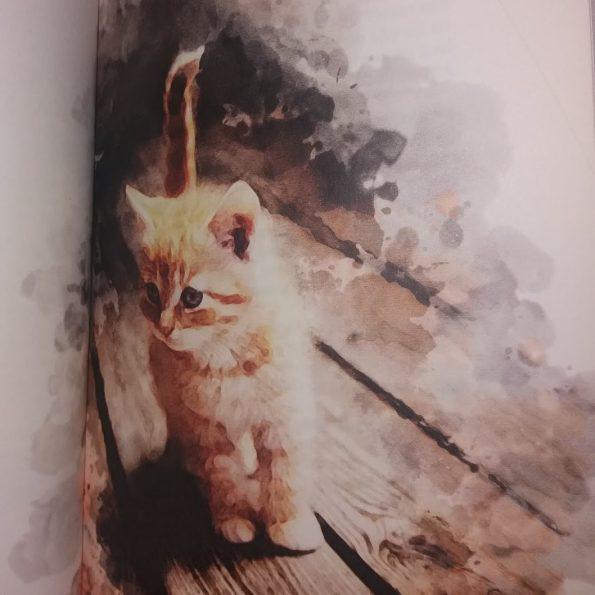 Najpiękniejsze wiersze o kotach, Franciszek J. Klimek (4)