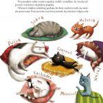 Nowe przypadki kociej gromadki (12)