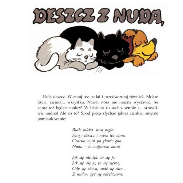 Przygody kota Filomona, ksiązka przygodowa dla dzieci (12)