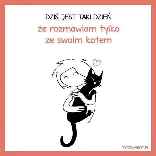 Typowy kot (5)