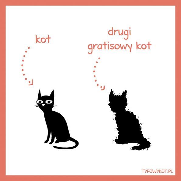 Typowy kot (7)